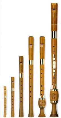 Gli strumenti musicali for Strumento del radiotecnico