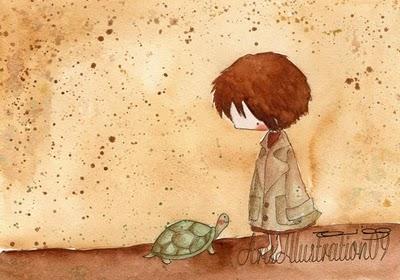 Risultati immagini per tartaruga cassiopea